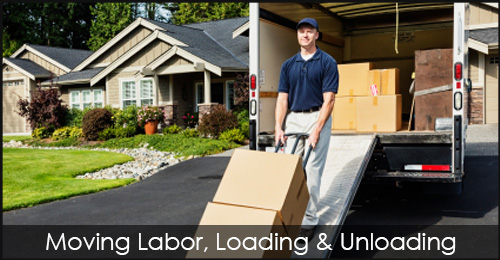 Moving Labor Loading Unloading